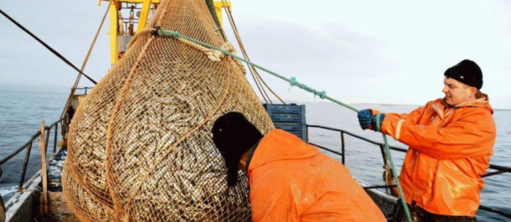 Нелегкая профессия моряка-рыбака: рыба, карты и море впечатлений