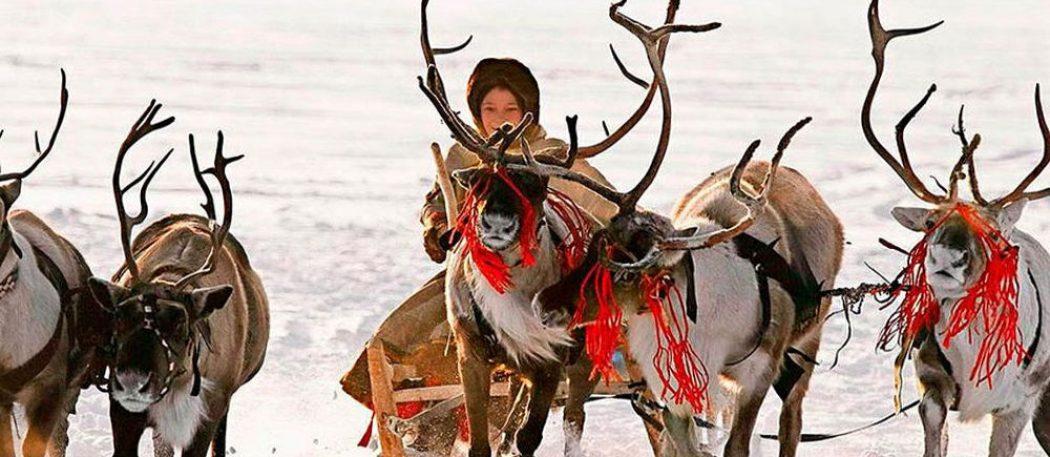 Ханты — современность, основанная на традициях